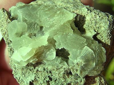 """Minerales """" Bonitos Cristales Arracimados De Prehnita Carchelejo (Jaen)- 7B14 """" 2"""