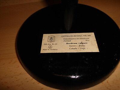 Altes Osterloh Modell Nr.389, Gerste, Getreidearten im blütenlosen Zustand, gebr