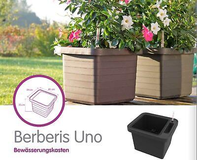 Pflanztrog Blumenkasten Bewässerungskasten mit Rollen u. Bewässerungssystem 3