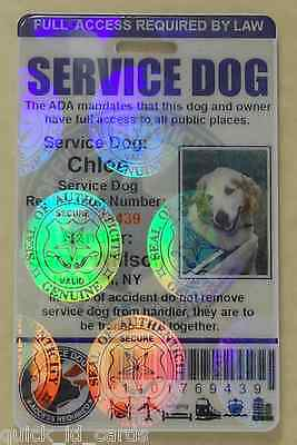33ca0e3a46e1 ... Holographic Service Dog Id Card For Service Animal Ada Rated 0Bh 9