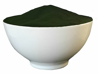 Organic Chlorella Powder - Cracked Cell Wall (Heavy Metal Detox) Choose Size:
