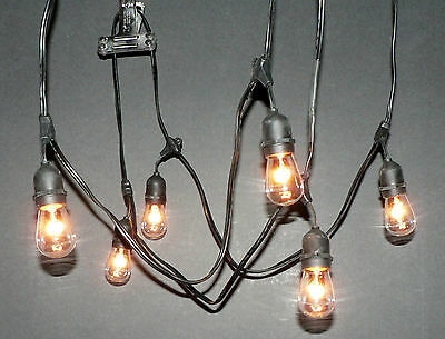 Vintage Patio String Lights Simple vintage patio string lights 30 bulbs vintage patio string lights black cord clear glass edison 1 of 8free shipping 30 workwithnaturefo