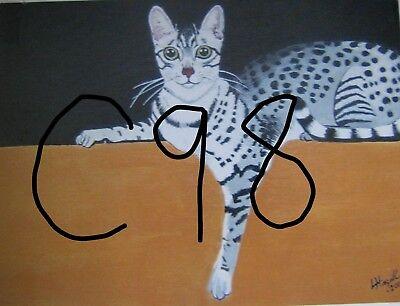 "C179  Original Acrylic Painting By Ljh  ""Teddy ""  British Shorthair  Cat  Kitten 8"