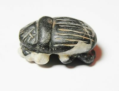 Zurqieh - Ancient Egypt , Choice Stone Button Scarab. 600 - 300 B.c 3
