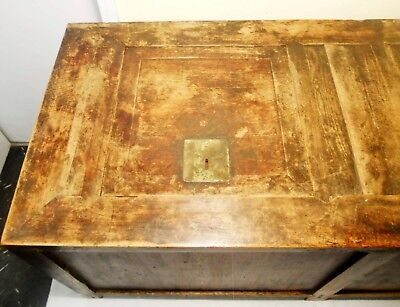 Antique Chinese Coffee Table/Treasure Trunk (2858), Circa 1800-1849 4