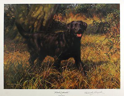 "FREDERICK HAYCOCK ""Black Labrador"" dog signed LIM ED SIZE:49cm x 63cm NEW RARE 2"