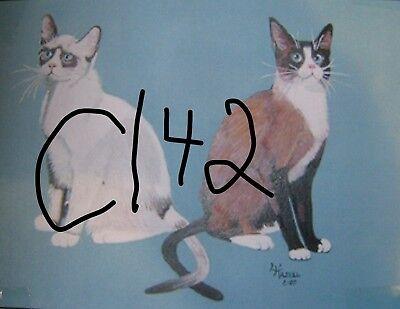 "C179  Original Acrylic Painting By Ljh  ""Teddy ""  British Shorthair  Cat  Kitten 10"