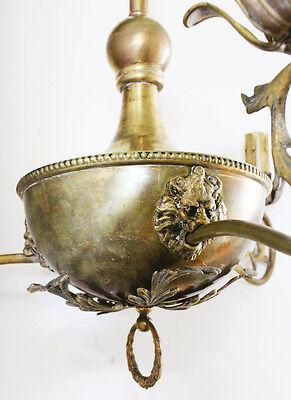 Antique Incredible Tole 3-Arm Figural Lions Brass Chandelier Gorgeous! 3