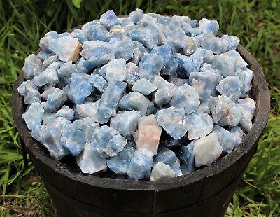 Bulk Wholesale Lot: Rough Blue Calcite 2 lb Crystal Healing Chakra Raw Chunks 7