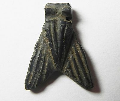 ZURQIEH - AF809- ANCIENT EGYPT , 18th DYNASTY LARGE STONE FLY AMULET. 1400 B.C 2
