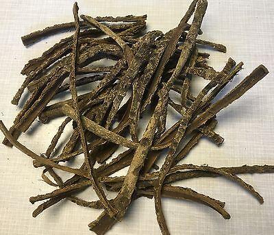 Nano Seemandelbaumrinde (100Gramm) TopQualität - Catappa Leaves - Seemandelbaum