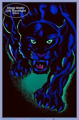 """King of The Night Panther Black Cat Blacklight Poster - Flocked - 23"""" x 35"""" 2"""