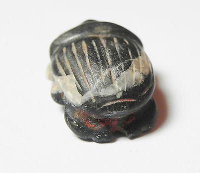 Zurqieh - Ancient Egypt , Choice Stone Button Scarab. 600 - 300 B.c 4