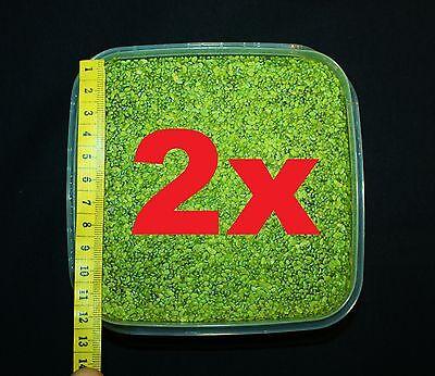 **WASSERLINSEN** 200qcm Lemna Schwimmpflanze Algenkiller Aquarienpflanze Teich 2