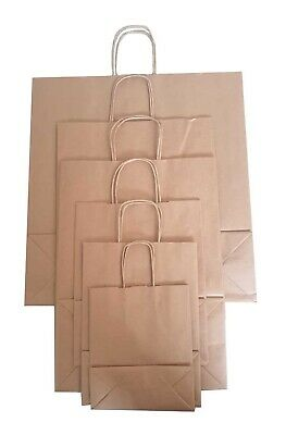 Brown Twist Handle Paper Party and Gift Carrier Bag / Bags With Rope Handles 2