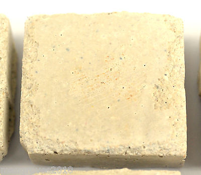 1 x Aragonite Coral Frag Tiles, Bases, Plugs, Zoas, Marine, Liverock 4