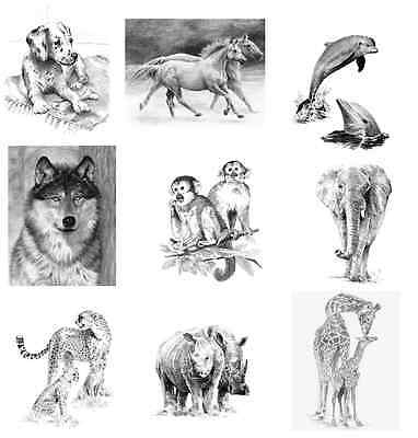 Animals & Landscapes Sketching Made Easy Drawing Kits & Graphite Pencils Set 2