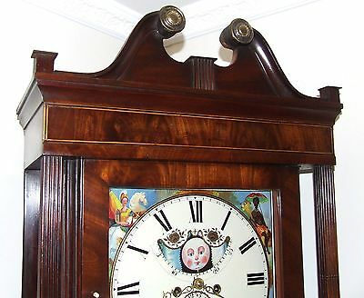Antique Mahogany Halifax Moon Longcase Grandfather Clock : MADDOCKS FRODSHAM 4