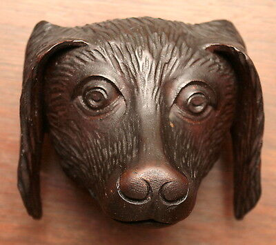 "Part- 19th c Renaissance Victorian carved dog head, walnut, 4""w 3"