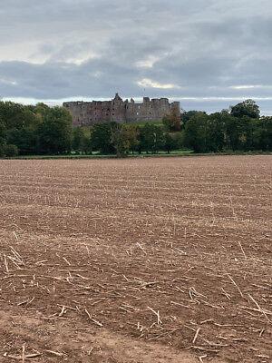 1646 1 x Charles I English Civil War Musket Ball from siege of Raglan Castle 5