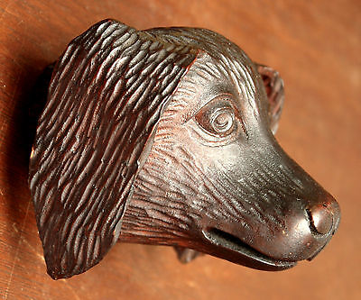 "Part- 19th c Renaissance Victorian carved dog head, walnut, 4""w 9"