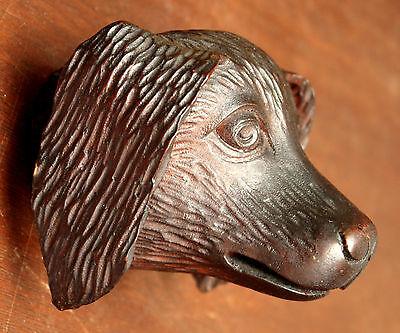 "Part- 19th c Renaissance Victorian carved dog head, walnut, 4""w 9"