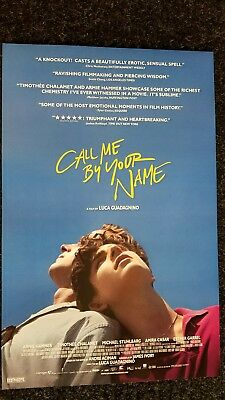 Call Me By Your Name poster  - Armie Hammer, Timothee Chalamet  - 11 x 17 inches 2