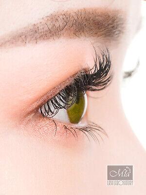 Individual Eyelash Extensions Mia Mink Lashes Semi Permanent J B C D DD L Curl 6