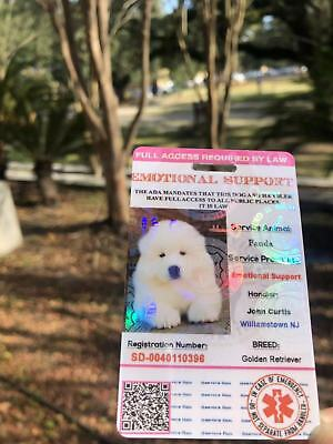 Pink EmotionalSupport/Service DogCard ID Holographic Charity ADA ESA With QRCode 2
