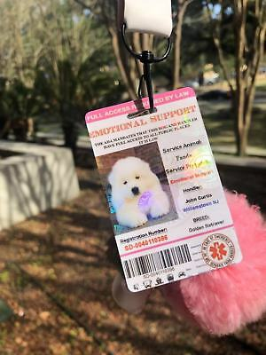 Pink Emotional Support/Service Dog Card ID Holographic Charity ADA ESA Barcode 5
