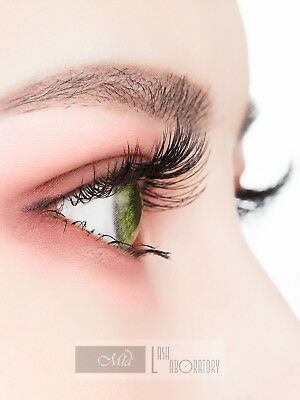 Mia Synthetic Mink Faux Mink Lash Individual Eyelash Extension Semi Permanent 2