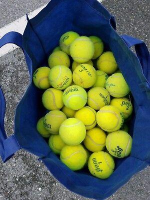 5 Dead Used Tennis Balls Dog Toys Fetch Catch Walkers Garage Corner Safety 9