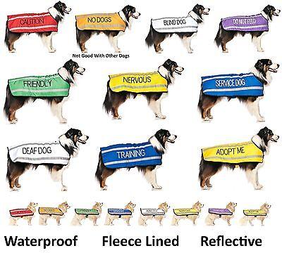 Dog Bandana Best Quality Price Personalised Message Neck Scarf Fashion Accessory 7