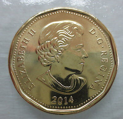 Canada 2014 Loonie Brilliant Uncirculated Dollar Coin 2