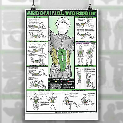 Professional ABDOMINAL AB WORKOUT Gym Fitness Training POSTER PRINT *LAMINATED* 2