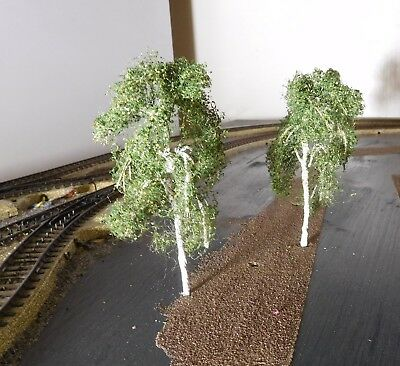 3 Birken, 120 mm hoch in Premium Qualität, jeder Baum ist ein Unikat 5