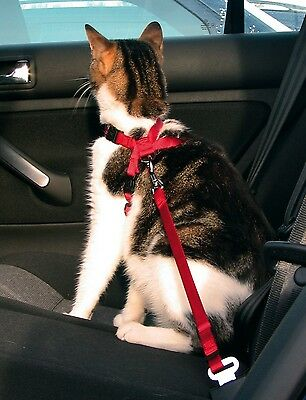 Trixie Cat Car Harness Attaches To Seat Belt Lock RED 1294 2