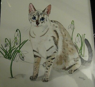 """A654     0Riginal Acrylic Aceo Painting By Ljh """"Oriental Shorthair"""" Cat Kitten 12"""