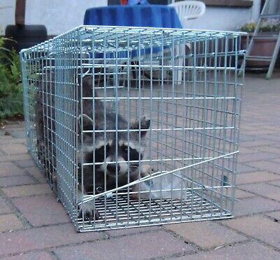 Marderfalle Lebendfalle 79cm Waschbärfalle Falle Fuchs Katzen Kaninchen XXL Groß 4