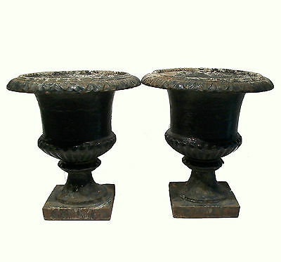 Antique Pair of Capagna Form Cast Iron Garden Urns - U.S. - Late 19th Century 3