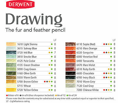 Derwent Professional Drawing Pencils - 24 Tinted Soft Colours in Natural Shades 2