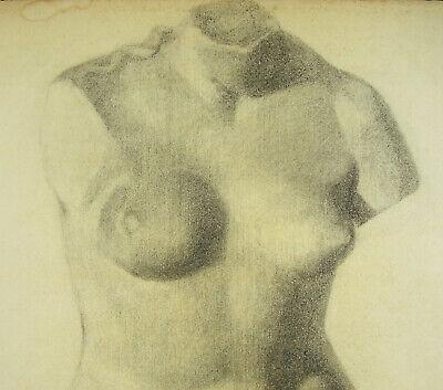 Venus Afrodita Desnudo Mujer Escultura Dibujo Al Carboncillo L Ap Antiguo 63CM 3
