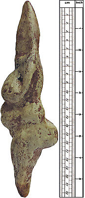 Venus from Savignano (Italy) - cast of resin 2