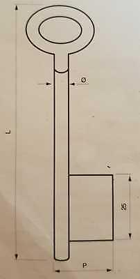 Stahlschlüssel Vollbart gerader Bart Buntbart Ø5,5mm