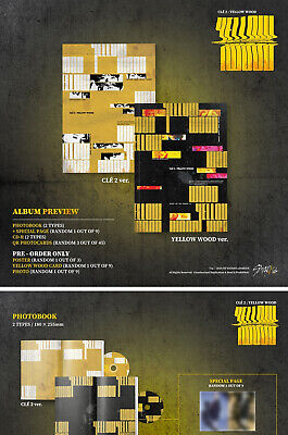 STRAY KIDS CLE 2:YELLOW WOOD Album NORMAL 2VerSET+POSTER+Book+Card+GIFT+PreOrder 7