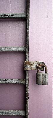 57x15 Antique Vintage Steel Iron Metal Fence Gate Door Panel Window Guard Grille 8