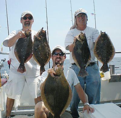 FLUKE FLOUNDER ULTRAVIOLET UV B2 SQUID FISHING RIGS LURES GAMAKATSU BASS SALMON