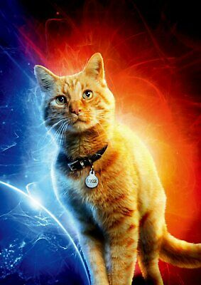 Captain Marvel: Goose, Carol Danvers Yon-Rogg A5 A4 A3 Texless Character Posters 3