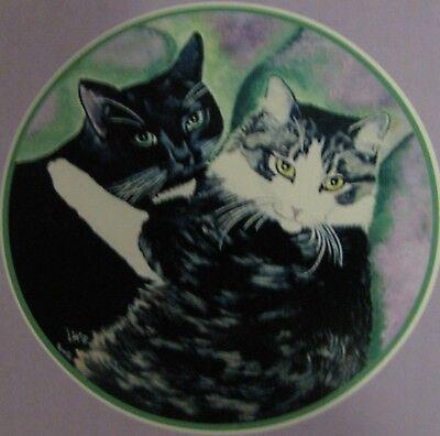 "C179  Original Acrylic Painting By Ljh  ""Teddy ""  British Shorthair  Cat  Kitten 3"