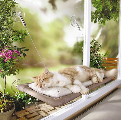 Window Mounted Cat Bed Hanging Suction Hammock Pet Sunshine Wall Perch Kitten 47 2